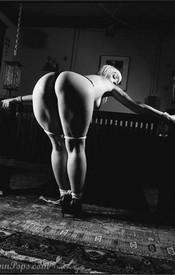 Lynn Bondage - Picture 9
